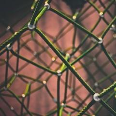 Sieci serwisowe w skrócie